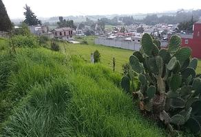 Foto de terreno habitacional en venta en  , cerro del murciélago, zinacantepec, méxico, 14030455 No. 01