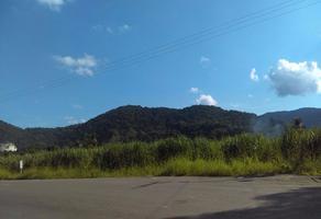 Foto de terreno habitacional en venta en cerro en venta con piedra caliza , acatlan de perez figueroa, acatlán de pérez figueroa, oaxaca, 17653439 No. 01