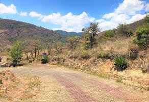 Foto de terreno habitacional en venta en cerro verde , cerro verde, morelia, michoacán de ocampo, 14214557 No. 01