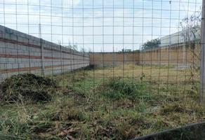 Foto de terreno habitacional en venta en cesion de derechos 0, campo sotelo, temixco, morelos, 0 No. 01