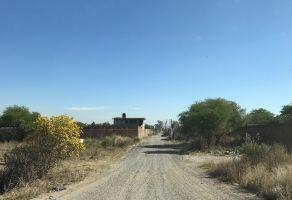 Foto de terreno habitacional en venta en El Zapote Del Valle, Tlajomulco de Zúñiga, Jalisco, 18666786,  no 01
