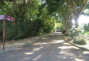 Foto de terreno habitacional en venta en chalahuite 100, arboledas san pedro, coatepec, veracruz de ignacio de la llave, 0 No. 01