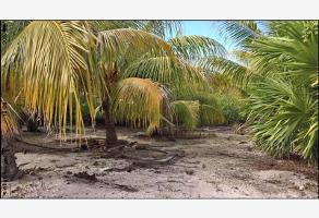 Foto de terreno habitacional en venta en chalupa , isla de holbox, lázaro cárdenas, quintana roo, 0 No. 01