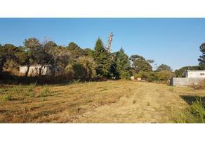 Foto de terreno habitacional en venta en  , chamilpa, cuernavaca, morelos, 0 No. 01
