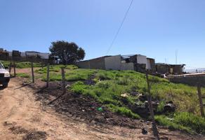 Foto de terreno habitacional en venta en chamizos 1374 , rinconada 2, tijuana, baja california, 0 No. 01