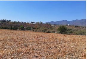 Foto de terreno comercial en venta en  , chapala centro, chapala, jalisco, 12361255 No. 01