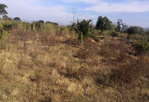 Foto de terreno habitacional en venta en  , chapala, chilchota, michoacán de ocampo, 18225603 No. 01