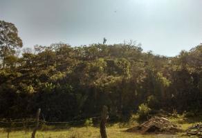 Foto de terreno habitacional en venta en chapala, colonia la cascada , chapala centro, chapala, jalisco, 6280353 No. 01