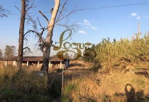 Foto de terreno habitacional en venta en chapala kilometro , el zapote del valle, tlajomulco de zúñiga, jalisco, 7068394 No. 01
