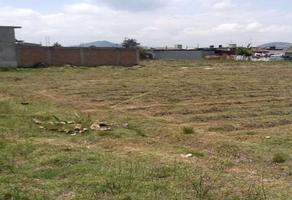 Foto de terreno habitacional en venta en chapultepec , san pablo autopan, toluca, méxico, 0 No. 01