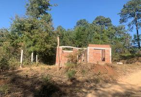 Foto de terreno habitacional en venta en  , charo, charo, michoacán de ocampo, 0 No. 01