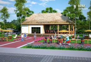 Foto de terreno habitacional en venta en chemuyil , tulum centro, tulum, quintana roo, 0 No. 01