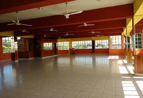 Foto de local en renta en  , chetumal centro, othón p. blanco, quintana roo, 0 No. 01