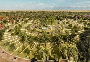 Foto de terreno habitacional en venta en cheú , izamal, izamal, yucatán, 0 No. 01