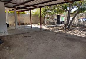 Foto de terreno habitacional en venta en chiapas entre 5 de febrero y calle cuauhtémoc , los olivos, la paz, baja california sur, 0 No. 01