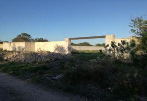 Foto de terreno habitacional en renta en chichí suárez , chichi suárez, mérida, yucatán, 0 No. 01