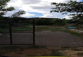 Foto de terreno habitacional en venta en chichi suárez , chichi suárez, mérida, yucatán, 0 No. 01