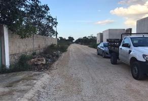 Foto de terreno habitacional en venta en  , chichi suárez, mérida, yucatán, 13772870 No. 01