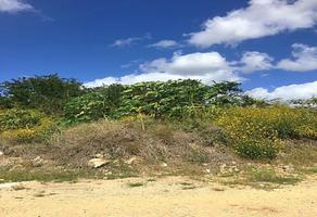 Foto de terreno habitacional en venta en  , chichi suárez, mérida, yucatán, 19051515 No. 01
