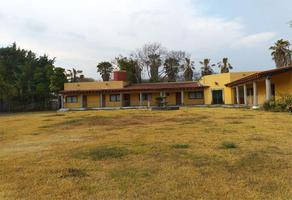 Foto de terreno habitacional en venta en  , chiconcuac, xochitepec, morelos, 0 No. 01