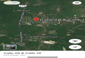 Foto de terreno habitacional en venta en  , chicxulub, chicxulub pueblo, yucatán, 0 No. 01