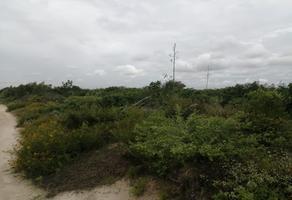 Foto de terreno habitacional en venta en chicxulub puerto whi271368, chicxulub puerto, progreso, yucatán, 0 No. 01