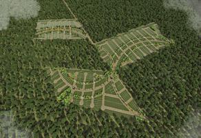 Foto de terreno habitacional en venta en chicxulub whi272500, chicxulub, chicxulub pueblo, yucatán, 0 No. 01