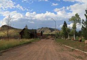 Foto de terreno habitacional en venta en  , chihuahua ii, chihuahua, chihuahua, 20266493 No. 01