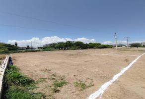 Foto de terreno habitacional en venta en  , chihuahua ii, chihuahua, chihuahua, 0 No. 01