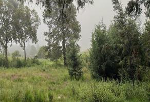 Foto de terreno habitacional en venta en chimalaca , chimalaca, tepetlixpa, méxico, 10741267 No. 01