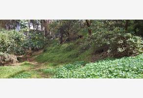 Foto de terreno comercial en venta en  , chimalcoyotl, tlalpan, df / cdmx, 20062842 No. 01