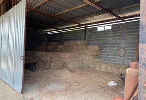 Foto de terreno habitacional en venta en  , china, china, nuevo león, 0 No. 01