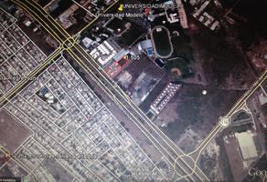 Foto de terreno comercial en renta en  , cholul, mérida, yucatán, 14276221 No. 01