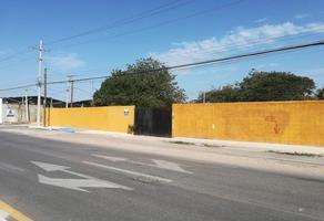Foto de terreno comercial en renta en  , cholul, mérida, yucatán, 14276257 No. 01