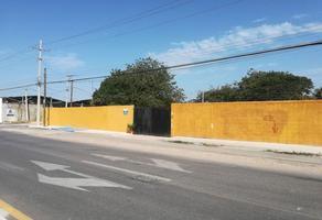 Foto de terreno comercial en renta en  , cholul, mérida, yucatán, 14276288 No. 01