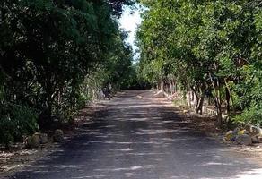 Foto de terreno habitacional en venta en cholul whi271883, cholul, mérida, yucatán, 0 No. 01