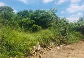Foto de terreno comercial en venta en  , chuburna de hidalgo iii, mérida, yucatán, 0 No. 01