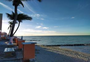Foto de departamento en venta en  , chuburna puerto, progreso, yucatán, 0 No. 01
