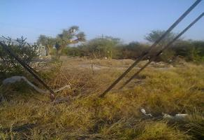 Foto de terreno habitacional en renta en  , ciénega de flores centro, ciénega de flores, nuevo león, 11803189 No. 01