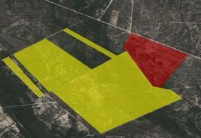 Foto de terreno industrial en venta en  , ciénega de flores centro, ciénega de flores, nuevo león, 16379253 No. 01