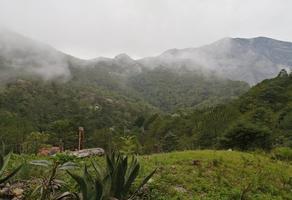 Foto de terreno habitacional en venta en  , cieneguilla, santiago, nuevo león, 0 No. 01