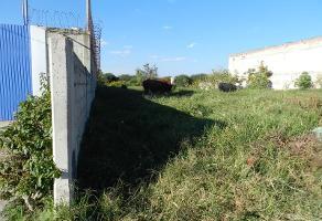 Foto de terreno habitacional en venta en cipreses 4, san jose del valle, tlajomulco de zúñiga, jalisco, 6675976 No. 01