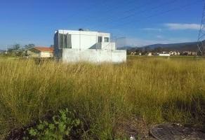 Foto de terreno habitacional en venta en circuito lorena ochoa , campo sur, tlajomulco de z??iga, jalisco, 3310292 No. 02