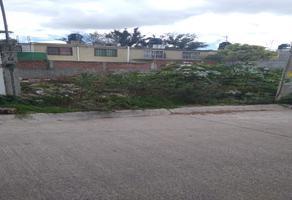 Foto de terreno habitacional en venta en circuito rosa , floresta, irapuato, guanajuato, 0 No. 01