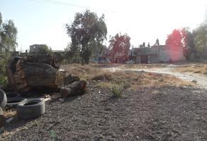 Foto de terreno habitacional en venta en citlalli poniente s/n , san miguel otlica, tultepec, méxico, 12497632 No. 01