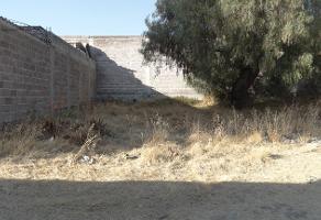 Foto de terreno habitacional en venta en citlalli poniente s/n , san miguel otlica, tultepec, méxico, 12497637 No. 01
