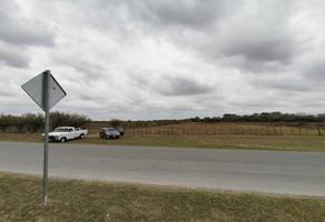 Foto de terreno habitacional en venta en  , ciudad cerralvo, cerralvo, nuevo león, 13040986 No. 01