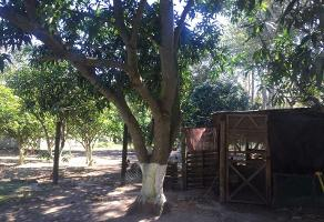 Foto de terreno habitacional en venta en  , ciudad cuauhtémoc, pueblo viejo, veracruz de ignacio de la llave, 11699443 No. 01