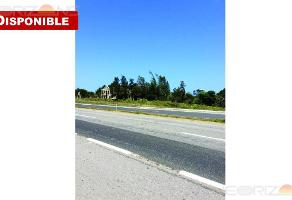 Foto de terreno habitacional en venta en  , ciudad cuauhtémoc, pueblo viejo, veracruz de ignacio de la llave, 11928806 No. 01