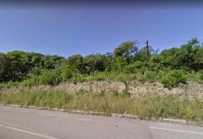 Foto de terreno habitacional en venta en  , ciudad cuauhtémoc, pueblo viejo, veracruz de ignacio de la llave, 11976547 No. 01